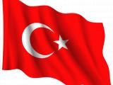 Türk Bayrağı 50x75cm